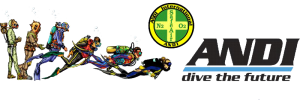 andi_new_logo