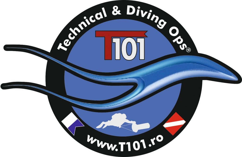 T101®